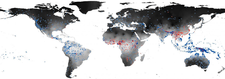 Map of Language Development