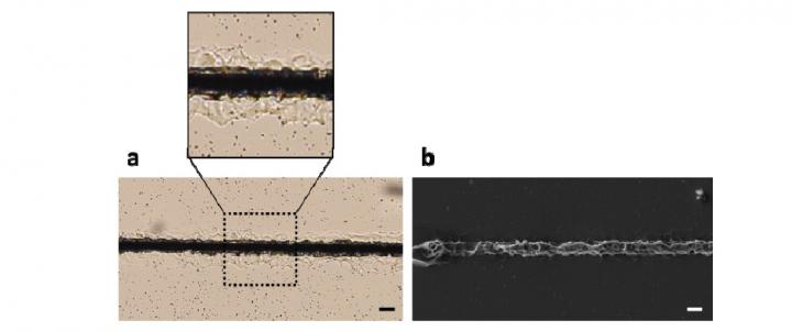 Metal-Silicone Microwires