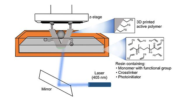 One-Step 3-D-Printing of Catalysts
