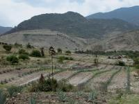 Archaelogical site of El Palmillo in present-day Oaxaca, Mexico
