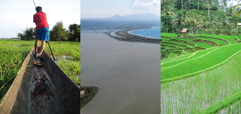 Global freshwater footprint