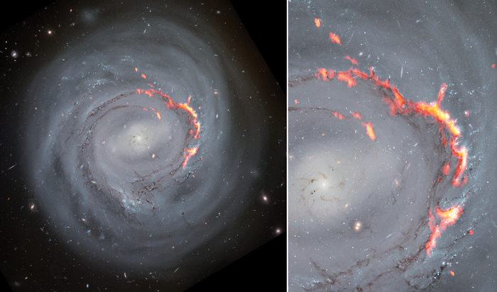 Zooming in on NGC 4921: A Ram Pressure Stripped Galaxy