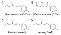 Aromatic-turmerone and analogues
