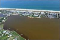 Brown Tide on Great South Bay