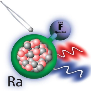 Creating and Studying Radioactive Molecules Advances Nuclear Structure and Fundamental Symmetry Studies