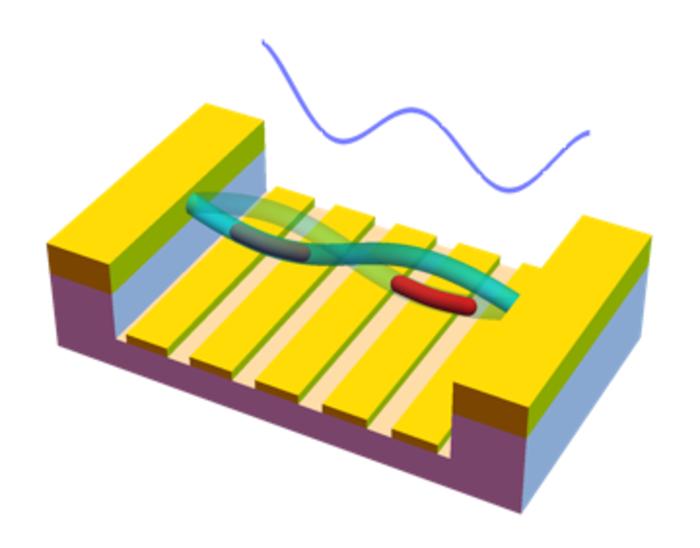 Representation of the flexural mode of a nanotube