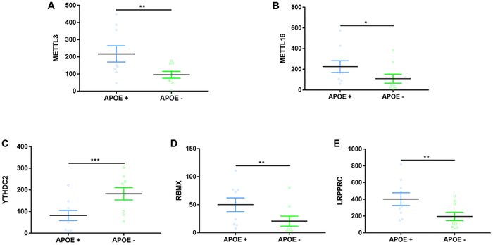 Expression differences on m6A-related regulators between APOE ɛ4+ and APOE ɛ4− groups