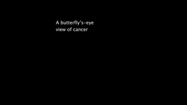 A Butterfly's-Eye View of Cancer