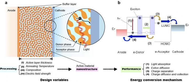 Organic photovoltaic bulk-heterojunction