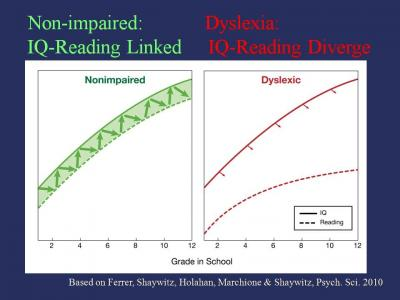 Comparing Nonimpaired and Dyslexic Readers