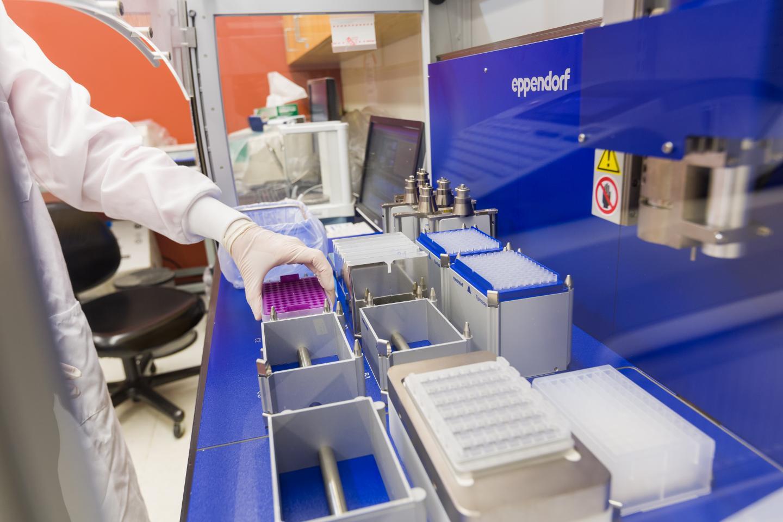 Genetic Studies Based on Million Veteran Program