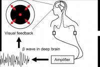 Figure 1: Real-Time Feedback System
