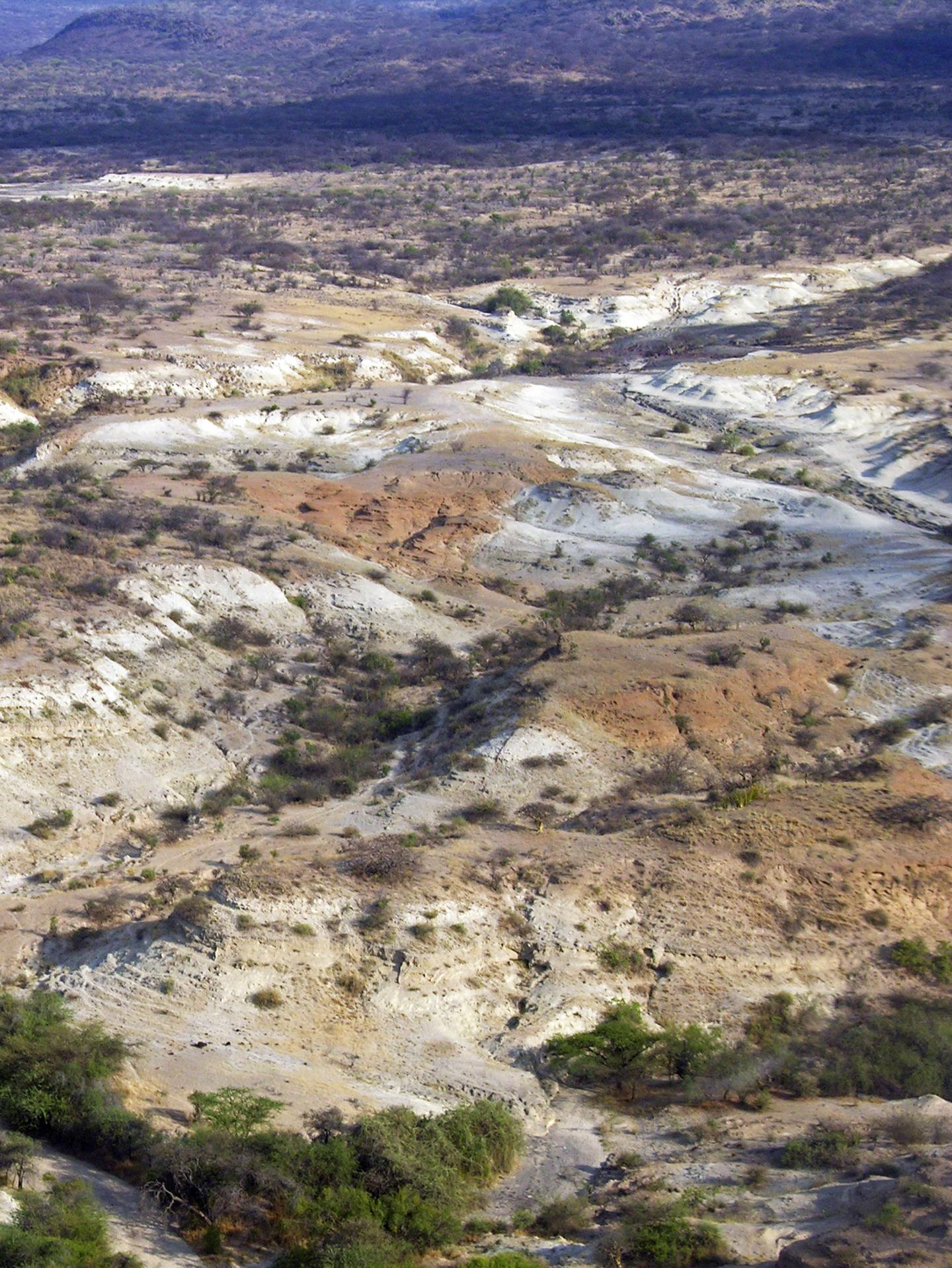 Aerial View of red-brown Oltulelei Formation Channel Deposits