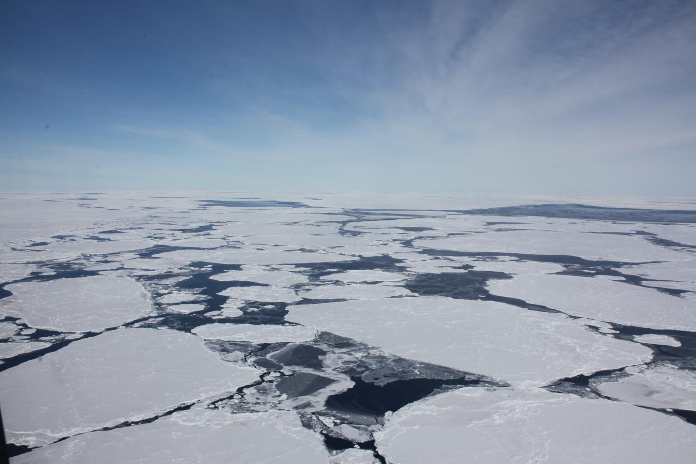 Sea Ice Floes