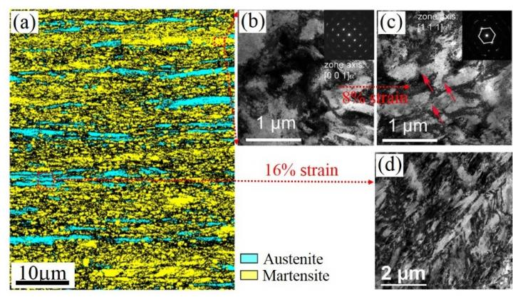 <i>Science</i> Publishes Super Steel Breakthrough