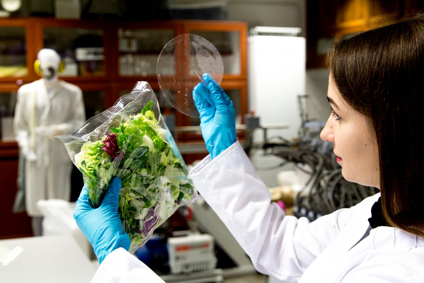 Antimicrobial Biodegradable Packages Keep Food Fresh