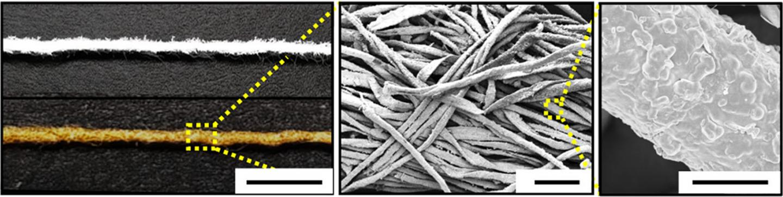 Cotton-Based Gold Electrode