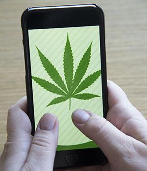 Tweeting about Marijuana