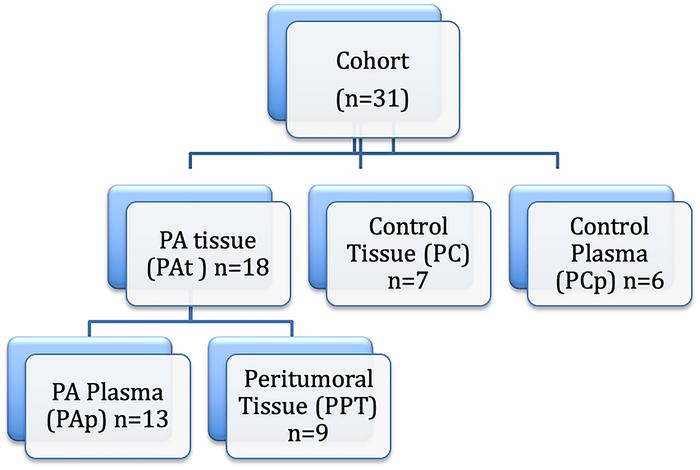 Pancreatic ductal adenocarcinoma