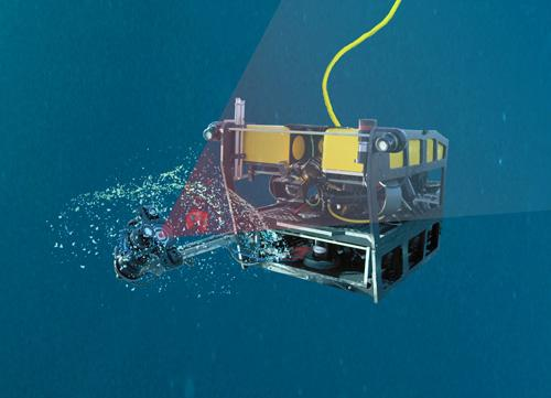 MBARI's MiniROV Using the DeepPIV System to Study a Giant Larvacean