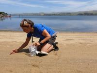 Associate Professor Ana Vila-Concejo collecting sand