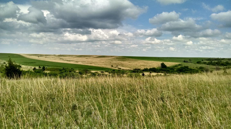Konza Prairie Grasslands