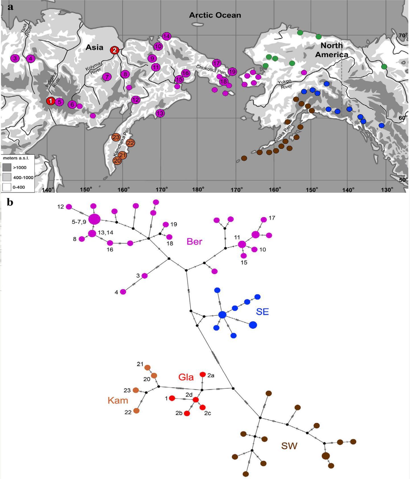 Map of Sampling Localities