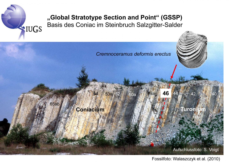 GSSP in Salzgitter-Salder