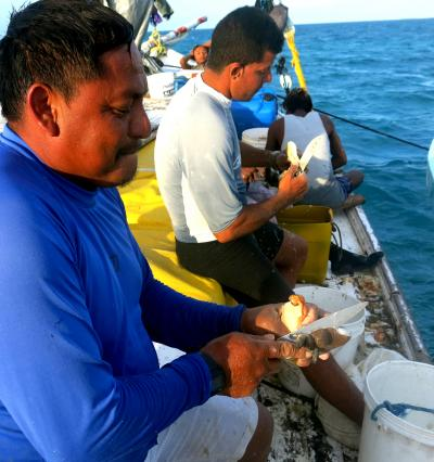 Fishers With Conch