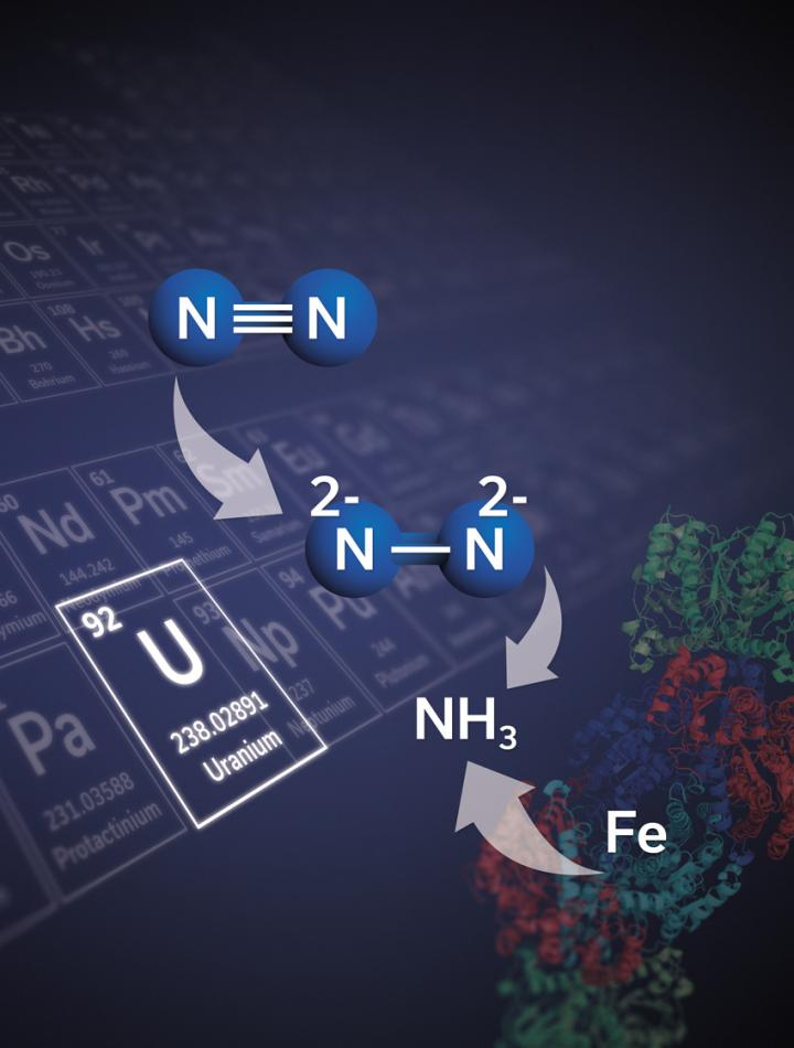 Illustration of Uranium-Based Compound