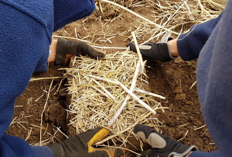 Soil Slab Removal