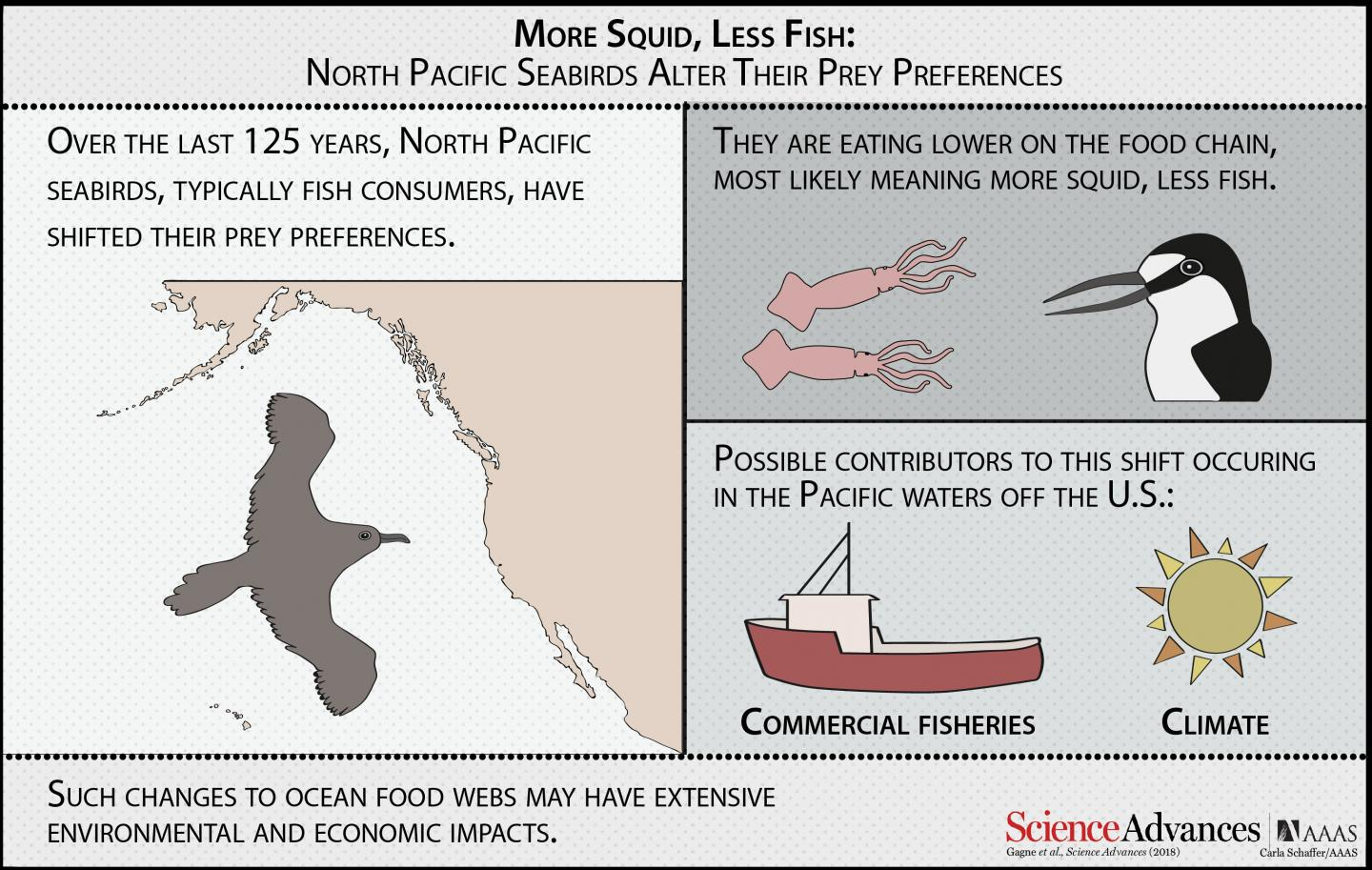 More Squid, Less Fish: North Pacific Seabirds Alter their Prey Preferences