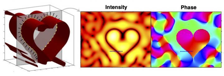 Cross-section of the designed heart-shaped phase singularity sheet