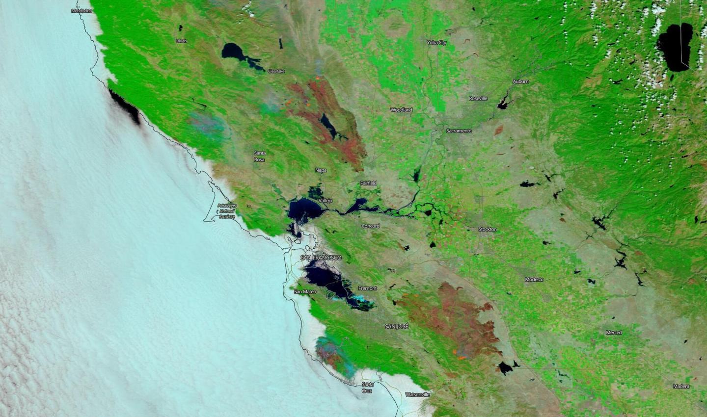 Terra image of California Fires' Burn Scars