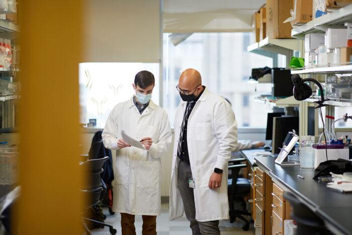 COVID-19 vaccine generates immune structures critical for lasting immunity