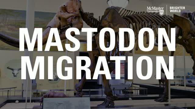 Mastodon Migration
