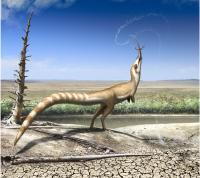 <i>Sinosauropteryx</i> in the Likely Open Habitat