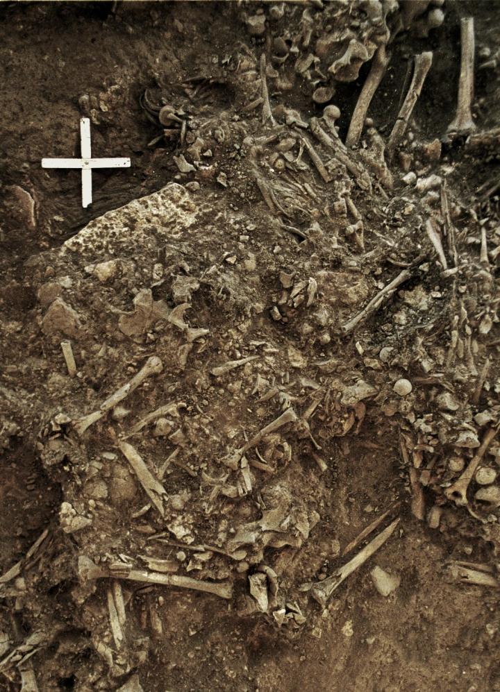 Remains of Ancient Plague Victim