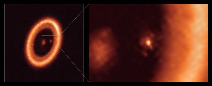 Spotted: An Exoplanet with the Potential to Form Moons