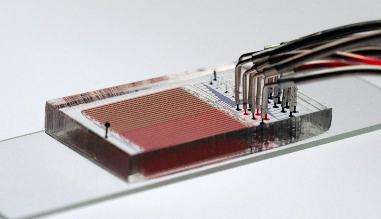 HT-MEK device