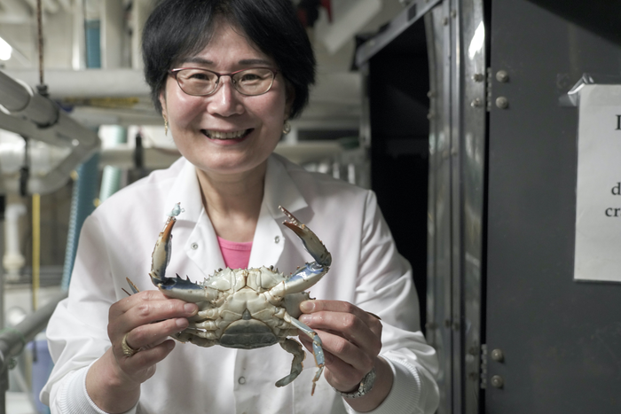 Maryland scientists crack blue crab's genetic code