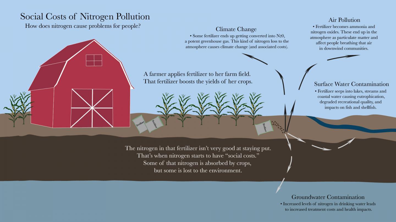 Social Costs of Nitrogen Pollution