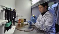 Ph.D. Student Lukasz Richter Works on Bacteriophage-Based Biosensors
