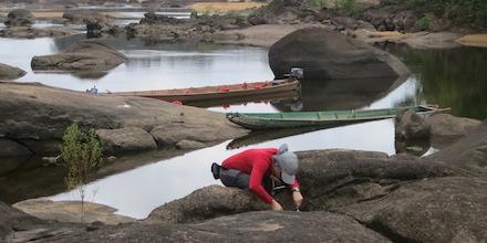 Fieldwork in Suriname Yields New Aquatic Beetles