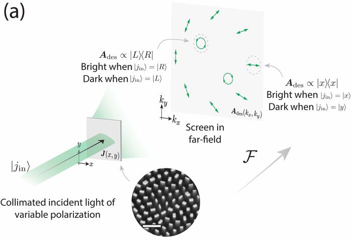Analyzer Hologram