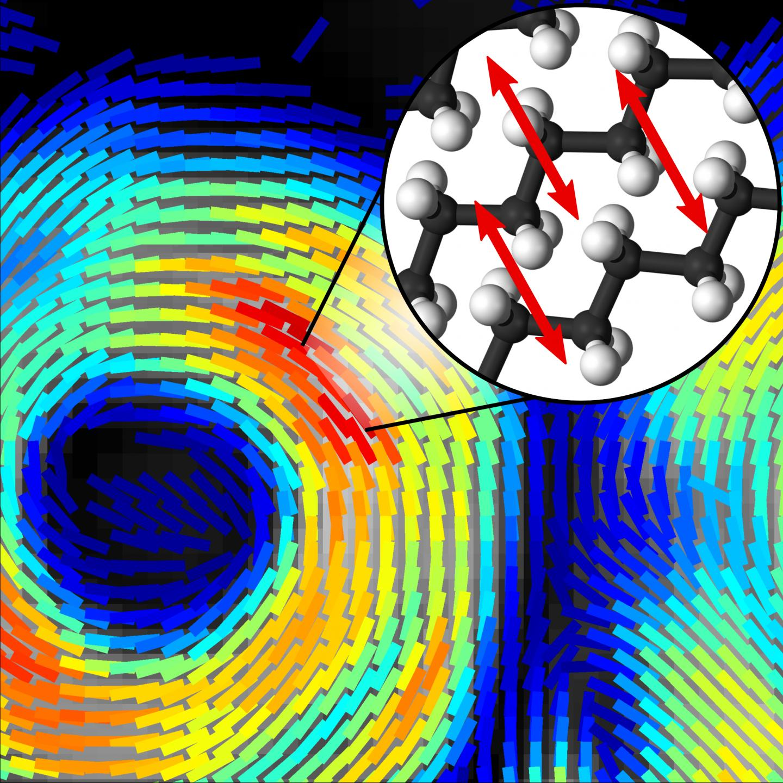 High Speed Polarized Coherent Raman Imaging