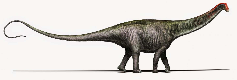<I>Brontosaurus</I>