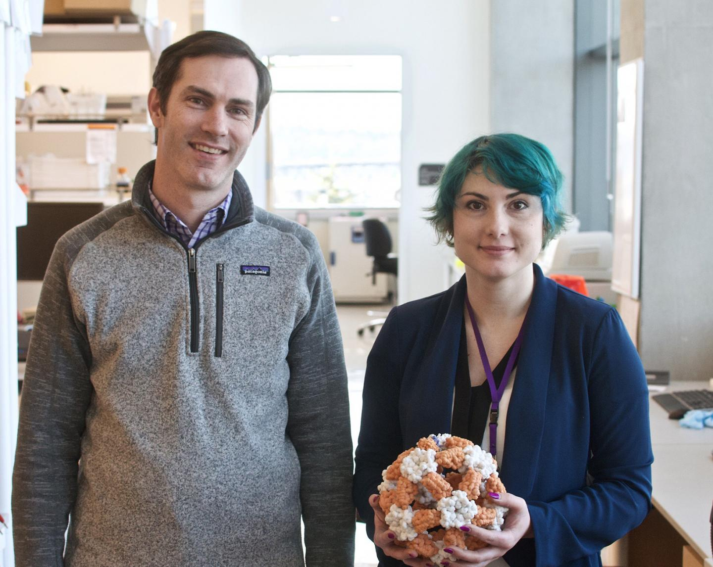 Neil P. King and Brooke Fiala, University of Washington Health Sciences/UW Medicine
