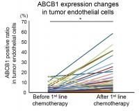 ABCB1 Expression Increases After Chemotherapy