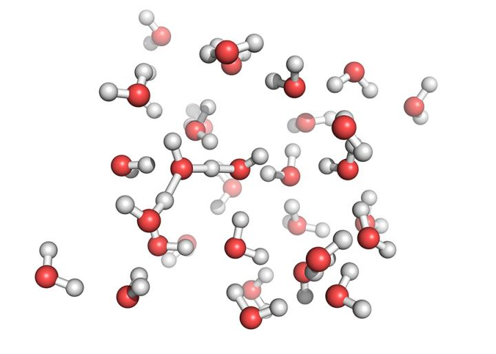 Simulations Give Important Insights into Molecular Behavior